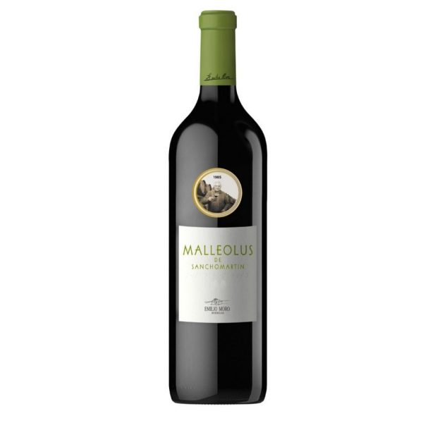 Malleolus De SanchoMartin